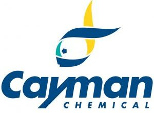 Cayman-Logo-300x244
